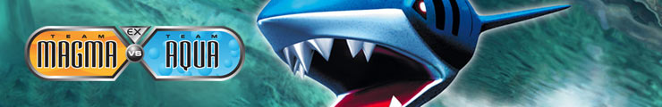 Team Magma vs Team Aqua